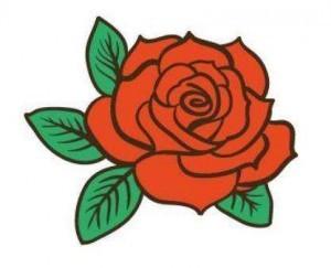 Rose cachée sur le site Internet