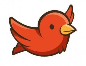 Trouvez l'oiseau et cliquez dessus pour valider votre participation !